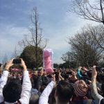 かなまら(男根)祭り@川崎大師駅 & 大師公園に行ってきた