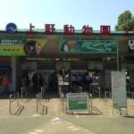 家族で上野動物園に行ってきた。