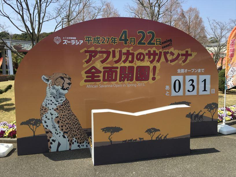 2015-03-22 12.07.47_R