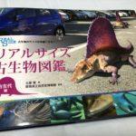 「古生物のサイズが実感できる! リアルサイズ古生物図鑑 古生代編」を購入。3500円もするけど写真集としても使える!